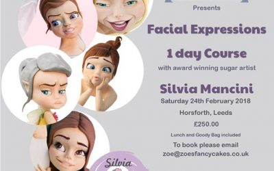 LEEDS, @Zoe'sFancyCakes, 24th February 2018, Facial expressions class (Fully Booked)